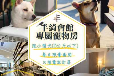Fengqi Club|Pet Room